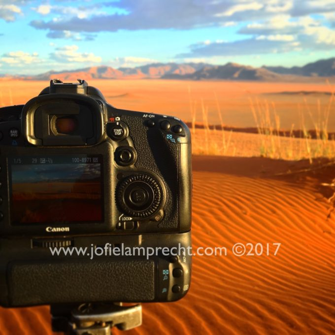 Photography tips and techniques while on safari
